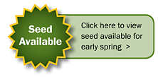 Seed Available
